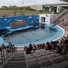 「東北の海」が身近になる、「仙台うみの杜水族館」その2