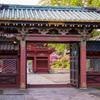 根津神社 つつじと、築300年を超える社殿がひっそりと下町風情を残す谷根千地区に鎮座
