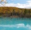 【北海道のおすすめスポット】青い池は本当に青かった!