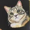 ネコちゃん描けました