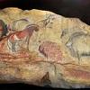 氷河期の洞窟の壁画は自閉症患者が描いた?