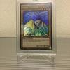 遊戯王カード 海外版 LUYW-EN221 アクア・マドール