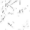 【進撃の巨人】座標とは?発動条件と正体を詳しく解説!