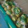 梨街道 千葉県市川大町に梨を買いに行きました。直売所は何時から?幸水、豊水、かおり、新高とこれから続々と楽しめます!