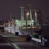 白き優雅な船の一区切りを起終点から眺める