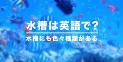水槽は英語でTank?
