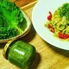 バジルより食べやすい大葉のジェノベーゼ のレシピ