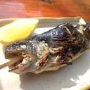 仕事×旅×食 酒好き旅人(タビト)の 『日本、再発見』 な日々