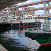 神戸港に帆船2隻が停泊中。