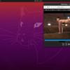【Ubuntu】エロ動画を鑑賞する