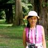 コスタリカ 背景は公園の巨木