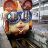 今日の鉄道