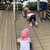 お散歩日和(*^_^*)