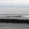 面ツル・形良いレフトでサーフ楽しめてます。波・湘南鵠沼 10/8