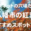 知られざる絶景スポットの穴場だらけ!八幡市の紅葉おすすめスポット7選