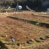 ブルーベリー農園の様子193 東広島市豊栄町