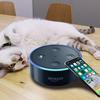 Siri & Alexa