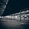 【電車にまつわる不思議な話】霧の中に現れる幻の駅 霧島駅