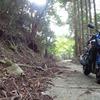 バイクで山奥にラーメンを食べに行く(前編)