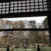 豪徳寺〜松蔭神社前〜三軒茶屋・九品仏・成城学園前