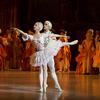 パリ・オペラ座バレエ・シネマ 『眠れる森の美女』 (2013年収録作)@神戸国際松竹  1月16日