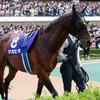 JRA友道康夫「いつもと違う」マカヒキ札幌記念(G2)回避へ。思い出されるのは、あのダービー馬の凡走劇……