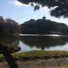 紅葉は今が見ごろ!横浜三溪園の11月中旬と下旬の色づきを比較してみたら