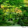 太宰府行くなら光明禅寺、竈門神社、観世音寺も一緒にまわれるよ!
