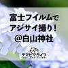 FUJIFILMで紫陽花撮り!@白山神社