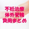 不妊治療・体外受精・費用のまとめ(京野アートクリニック高輪、他)