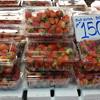 タイ・チェンマイの苺(イチゴ)@シーナカリン大学の市場(カタラ・モクタラ)
