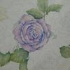 1】塗り絵の主線(?)を薄くして塗りたいプロジェクト☆花日和花だよりより