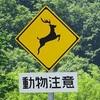 一般道路では見かけない? 道路標識