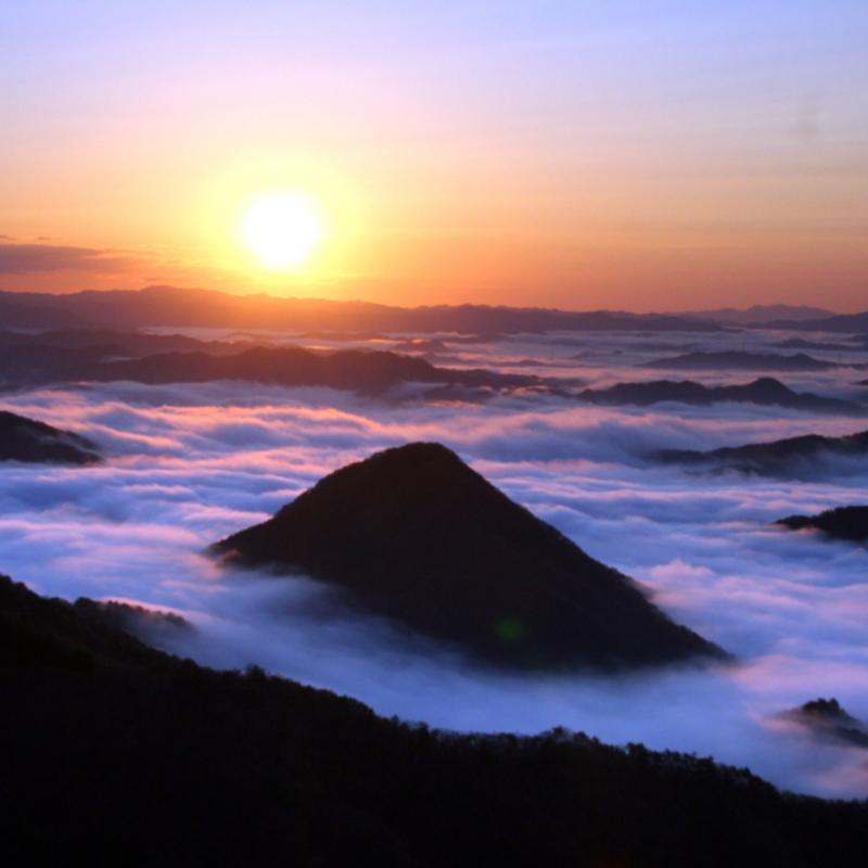 【2018新春】大江山の頂から絶景の雲海を眺む Sea of Clouds in Mt. Oe