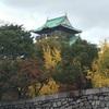 秋の大阪城公園とマリオカート