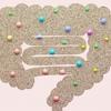 ダイエット中の便秘は善玉菌で改善!腸内環境を整える食べ物と5つの習慣
