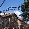 クラクフ3日目 アウシュヴィッツ・ビルケナウ ナチスの強制絶滅収容所