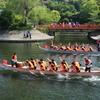 第3回宇治川・源平・龍舟祭(京都府宇治市)