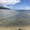 ウミガメ遭遇率No.1のハレイワ・アリイ・ビーチへ