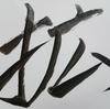 2016年を漢字一文字であらすとしたら『広(拡)』。