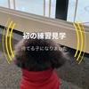 2021.1.23 【スケート見学】初めて練習を見に行ったEmma‼️  Uno1ワンチャンネル宇野樹より