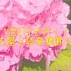 1泊2日で行く、名古屋と岐阜横断の旅!