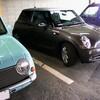 憧れの車(MINI)と会ったパオ♂ (^ω^)/(○ω○)