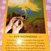 5月のカード 新たな始まり NEW BEGINNINGS