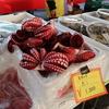 第8回 ぎふ市場まつりに行きました @岐阜 岐阜中央市場