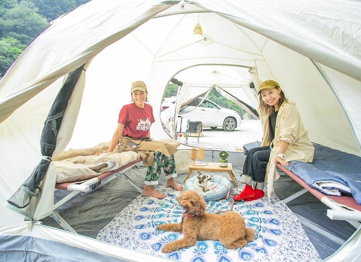愛犬と一緒にキャンプに行きたい!  芳美リンさんに聞くペットとのキャンプの楽しみ方  (入門編)