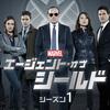アベンジャーズにどハマりしたら絶対見て!!!「エージェント・オブ・シールド(Agents of S.H.I.E.L.D)シーズン1」 #9