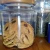 パンの保存、クッキーの保存、とインジェラ
