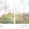 「椎葉の焼畑」継承プロジェクト、今年度もスタート!
