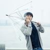 なんで傘は忘れられやすいのか?ビニール傘を雑に扱う私達